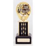 Campbells Bay School music award